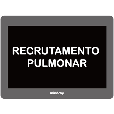 SOFTWARE DE RECRUTAMENTO PULMONAR